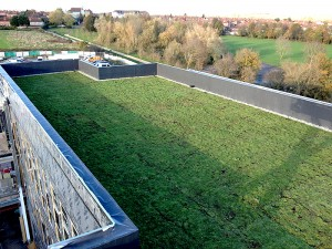 Green Business Roof
