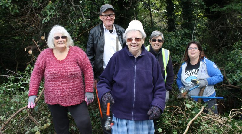 Residents' group works to improve road safety at Inns Court