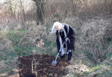 Memorial tree planting on Northern Slopes as tribute to local conservationist